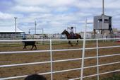 Pennington Cty 4-H Rodeo in Wall, SD