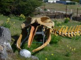 The old man says it takes him about two years to piece together a whale skeleton.