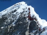 Huge numbers of people on the Hillary Step­­­­­­ (including Mollie and Lhakpa somewhere)