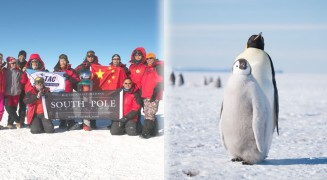 South Pole Emperor Odyssey 2015